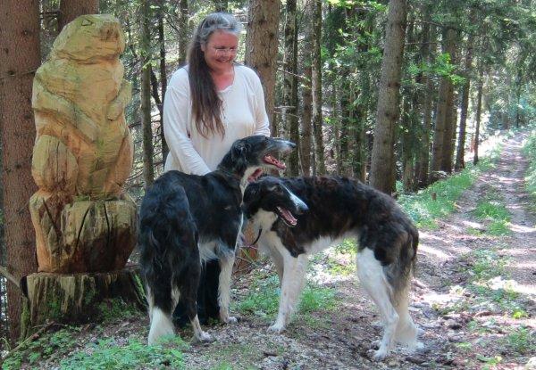 Mit Sighthound im Wald